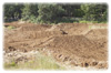 MX Track Constructed - (Practice Track)